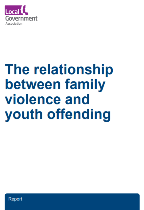 The relationship between family violence and youth offending